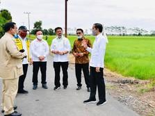 Lumbung Pangan Jokowi di Tangan Prabowo, RI Siap Swasembada?