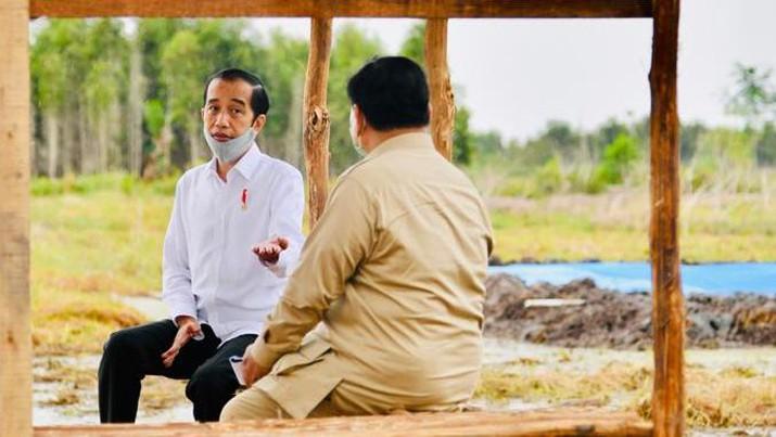 Presiden Joko Widodo dan Menteri Pertahanan Prabowo Subianto meninjau lokasi pengembangan food estate atau lumbung pangan nasional dalam kunjungan kerja ke Provinsi Kalimantan Tengah pada Kamis (9/7/20220). (Biro Pers Sekretariat Presiden/ Laily Rachev)