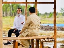 Prabowo Jadi 'Komandan' Food Estate, Buwas Siap Dukung