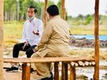 Catat! Jokowi Beri Mandat ke Prabowo Urus Lumbung Pangan RI