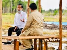 Mentan SYL Garap 30 Ribu Ha di Lumbung Pangan, Prabowo Ikut?