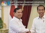 Jokowi-Prabowo Berduet Hidupkan 'Lumbung Pangan' Era Soeharto