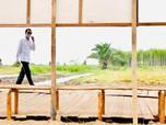 Bertolak ke Sumatera Utara, Jokowi Cek Lumbung Pangan Raksasa