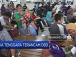Asia Tenggara Terancam DBD