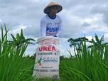 Jokowi Sempat 'Ngamuk' Soal Pupuk, Mentan Komentar Begini