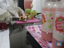 Catat! Saran Ahli Vitamin Wajib Konsumsi Saat Pandemi