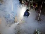 Waspada Penyakit Mematikan Lain di Tengah Pandemi, DBD!