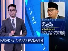 Prabowo Pimpin Pengembangan Food Estate Kalteng, Ini Tugasnya