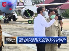 Ini Alasan Presiden Tunjuk Prabowo di Proyek Food Estate