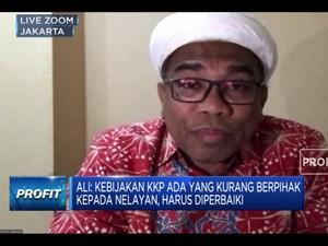 Ali Ngabalin: Larangan Ekspor Benih Lobster Rugikan Nelayan