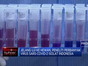 Vaksin Corona Merah Putih Segera Uji Coba ke Hewan
