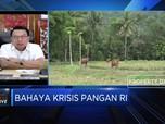 Ini Alasan Jokowi Pilih Prabowo Pimpin Program Lumbung Pangan