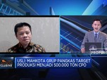 Target Produksi CPO 500 Ribu Ton, MGRO Sasar 70% Pasar Lokal