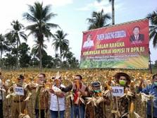DPR RI Dukung Kementan Genjot Produksi Pertanian Lampung