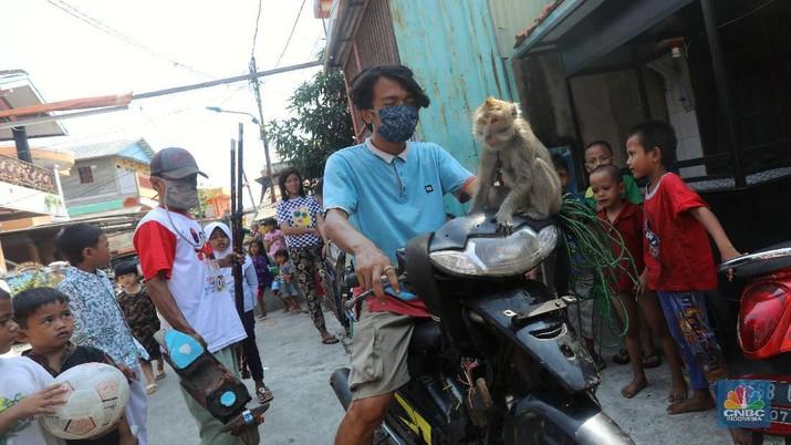 Atraksi Topeng Monyet (CNBC Indonesia/Andrean Kristianto)