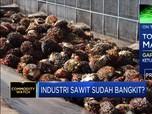 Harga CPO Melejit, Gapki:Prospek Industri Sawit Masih Positif