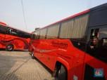 Potret Bisnis Bus Pariwisata yang Tersungkur Dihantam Pandemi