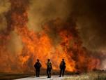 Kebakaran Hutan AS, 7.800 Warga California Dievakuasi