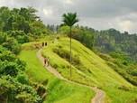 Tiru China, RI Akan Terapkan Forbidden City di Ubud Bali