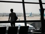 Agustus Mulai Ramai, Jumlah Penumpang Pesawat Melesat 46%