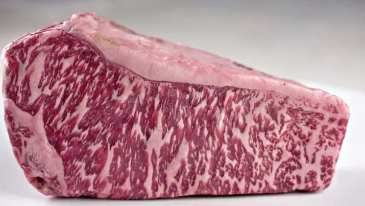 Wagyu Beef. Ist