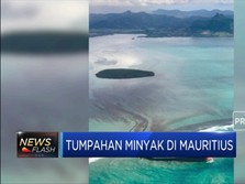 Tumpahan Minyak Kotori Perairan di Mauritius