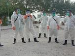 Pertamina Hulu Energi Bersihkan Ceceran Minyak di Pulau Pari