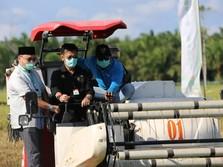 HUT RI Ke 75, Momentum Bangkitkan Korporasi Tanaman Pangan