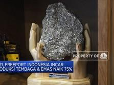 Freeport Indonesia Sasar Kenaikan Produksi Tembaga & Emas