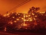 Kebakaran Hutan California Meluas, Rumah Penduduk Terancam