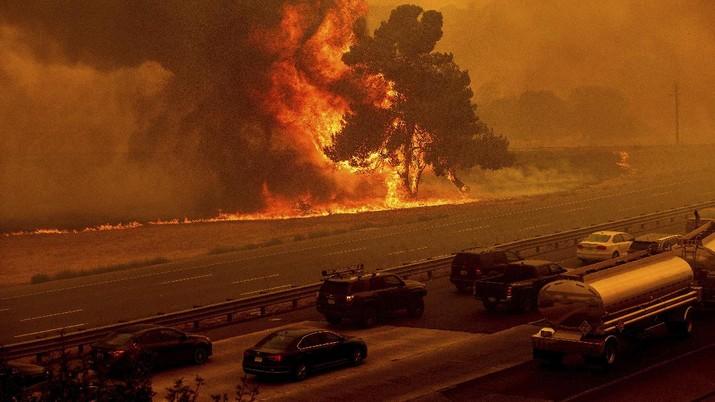 Kebakaran hutan California meluas. (AP/Nic Coury)