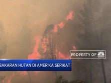 Kebakaran Melanda Lake County di California, AS