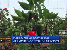 Produsen Sayur Asal Abu Dhabi Ini akan Investasi ke Subang