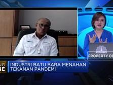 Plan B, Jika Harga Terus Turun PTBA Kurangi Produksi 15%