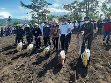 Perkuat Pertanian Saat Pandemi, Mentan Geber Korporasi Petani