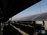 Harta Karun Energi Terbesar RI Diusulkan Jadi PSN Jokowi