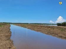 Basuki Soal Food Estate Jokowi: Masalahnya Irigasi Tersumbat
