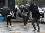Jam Malam Depok - Topan Maysak Landa Korea Selatan