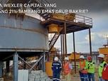 Siapa Wexler Capital yang Pegang 21% Tambang Emas Bakrie?