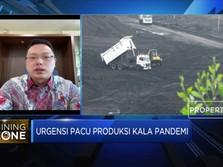 Bangun Smelter Seng, ZINC Alokasikan Investasi USD 60 Juta