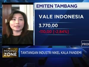 Hingga 2022, Produksi Nikel Akan Surplus 100 Ribu Ton/tahun