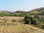 Intip Keindahan Pulau Rinca yang akan Dijadikan Jurassic Park