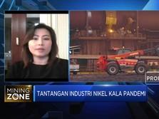 Soal RPP UU Minerba, INCO: Penerapannya Jangan Dipukul Rata