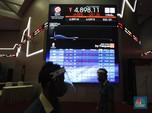 Debut IPO, Saham Perikanan Rajungan Melesat 34%