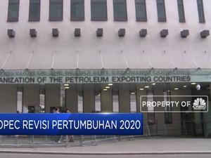 OPEC Revisi Pertumbuhan Permintaan Minyak 2020