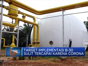 Target Implementasi B-30 Sulit Tercapai Akibat Corona