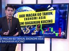 'Jadi Macan 60 Tahun,Ekonomi Asia Kini Bagaikan Kucing'