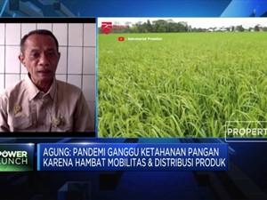 Bantu Petani, Kementan: Ayo Konsumsi Pangan Lokal!