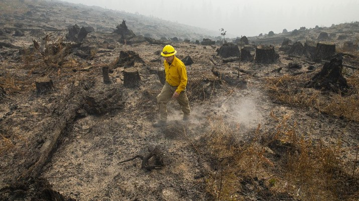 Marcus Kauffman with the Oregon Department of Forestry, walks through a burned out area of the Holiday Farm Fire along the southwest edge of the burn area above Deerhorn, Ore., Thursday, Sept. 17, 2020. (Chris Pietsch/The Register-Guard via AP)