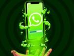 Fitur Baru WhatsApp Android: Delete Foto & Video Otomatis